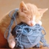 kitten_yarn_640_large