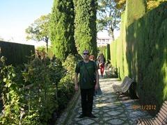 Альгамбра  дворцовый комплекс и крепость