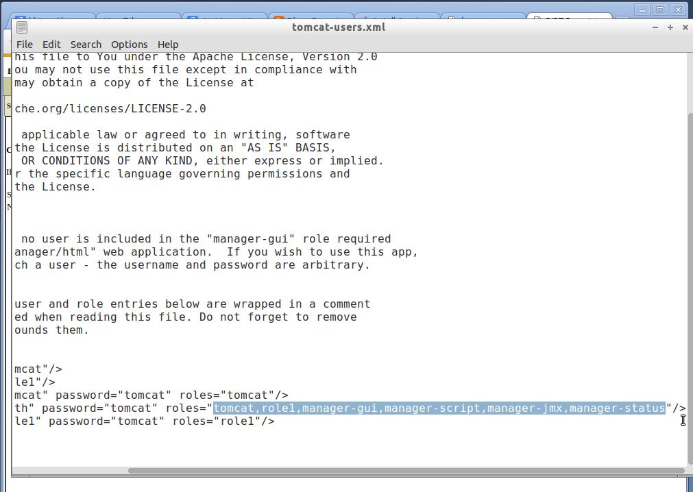 Installing Birt Viewer Server In Addition To Birt Study Designer 15