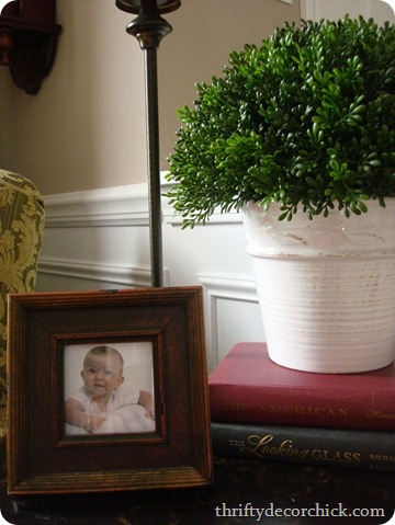 faux boxwood