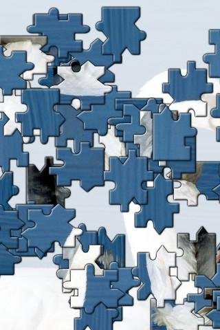 Horse Jigsaw Puzzle Apk Download 1
