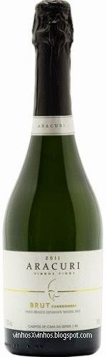 Aracuri Brut Chardonnay 2013