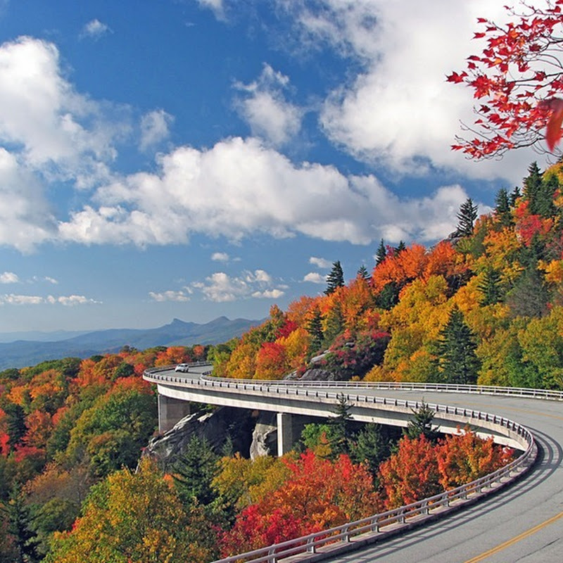 Linn Cove Viaduct: The Most Environment Friendly Bridge