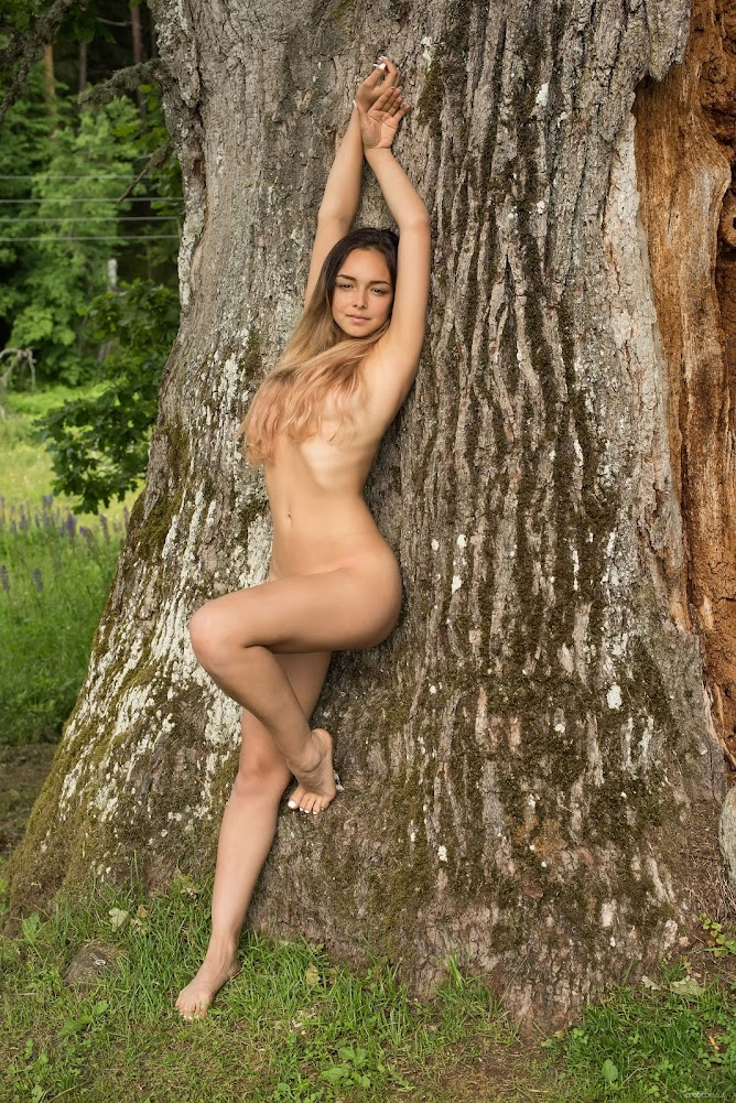 [Eroticbeauty] Slava - Tree Of Life - Girlsdelta