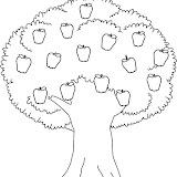 APPLE_TREE1_BW_thumb.jpg