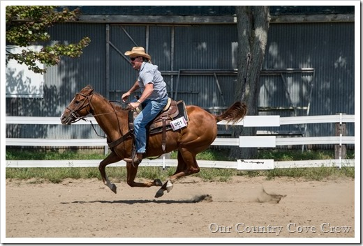 Saddle club (246 of 258)