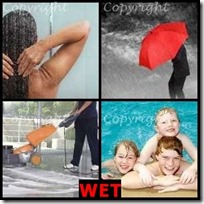 WET- 4 Pics 1 Word Answers 3 Letters
