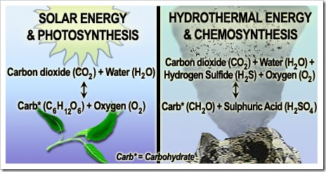 Photosynthesis and chemosynthesis
