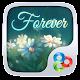 Forever GO Launcher Theme v1.2