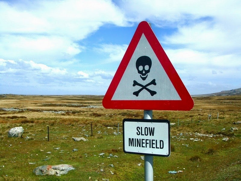 falkland-penguins-minefield-7