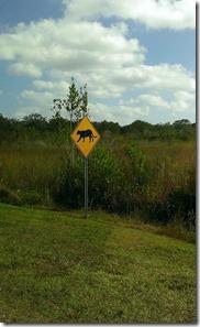 Florida Panther Sign