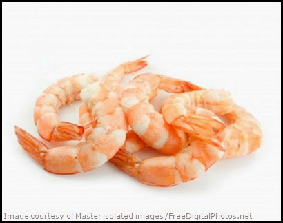 Free Shrimp Photo