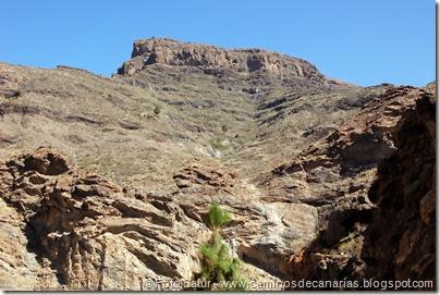 6723 Carrizal Tejeda-La Aldea(Mesa Junquillo)