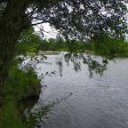 Loire au niveau d'Épercieux-Saint-Paul, amont, rive droite photo #1013