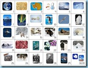 Calendar Connections Small Arctic and Antarctica
