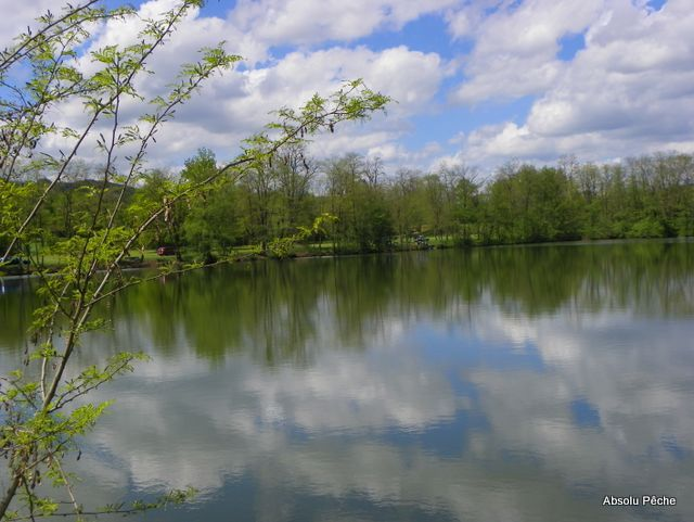 Petit lac photo #1158