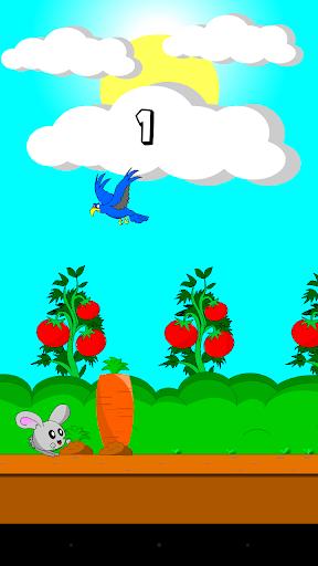 Jumpy Bunny
