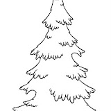 evergreen tree coloring pages - photo#17