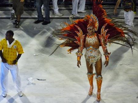 Carnavalul de la Rio:  Vedetele erau in general travestiti