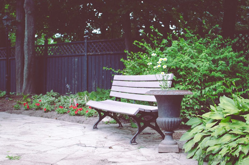 Photo Finish 27 | Garden Bench | personallyandrea.com
