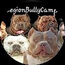 Image Google de Legion BullyCamp