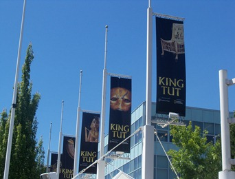 King Tut flags hanging outside science center