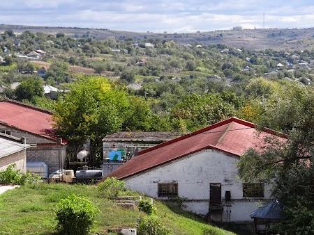 Drumul vinului -Basarabia: Dealurile de la Puhoi