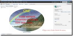 Imagem-lbuns da web do Picasa4