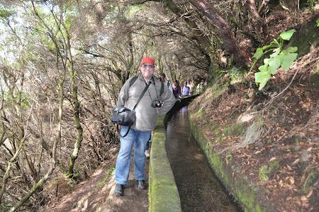Levadas in Madeira