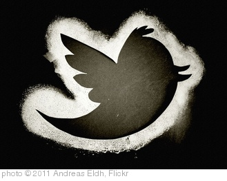 'Twitter' photo (c) 2011, Andreas Eldh - license: http://creativecommons.org/licenses/by/2.0/