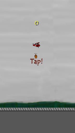 Red Twin Flight