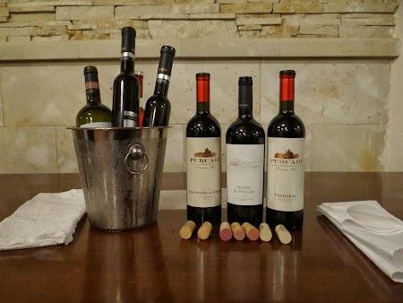 Basarabia - Drumul Vinului: Degustare Purcari