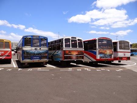 Autogara Port Louis