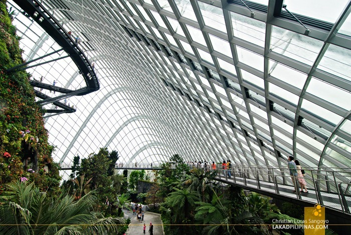 The Cloud Forest Treetop Walk at Gardens by the Bay