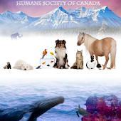 Humane Society of Canada