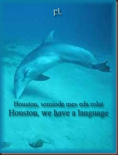 Houston we have a language Cover