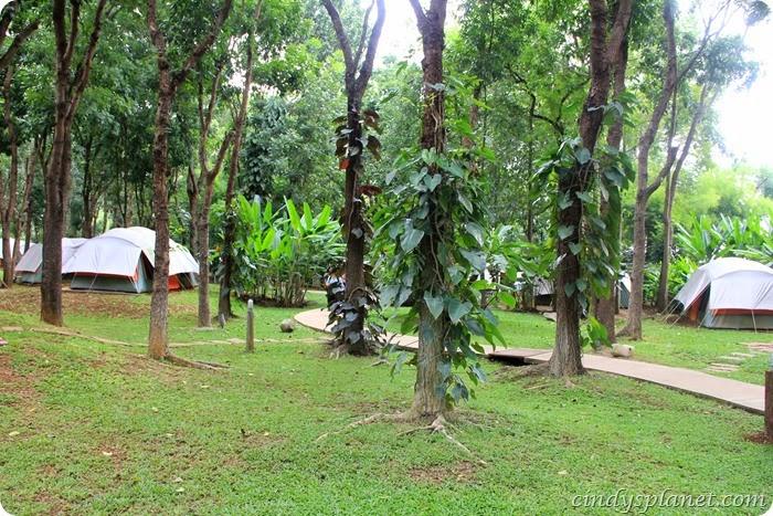 chok chai farm camp (12)