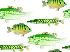 FISH_SLIDE