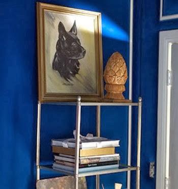 Zooey-deschanel-blue-studio
