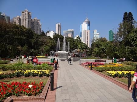 Anul Nou Chinezesc: Gradina Botanica HK