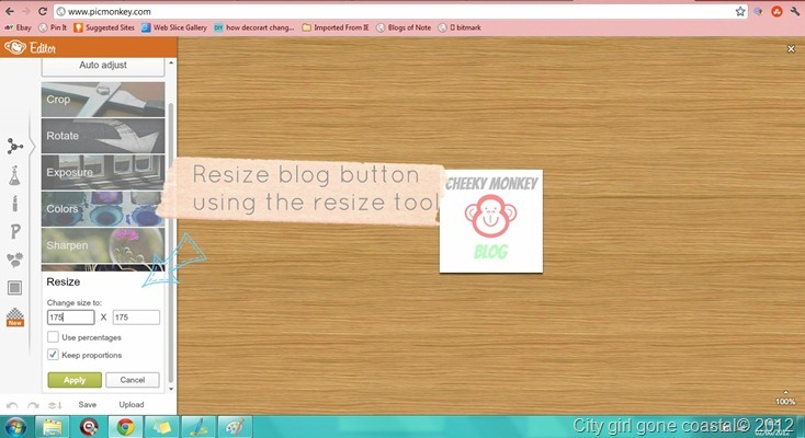 resizing a blog button