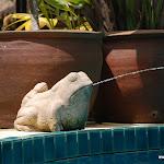 Тайланд 18.05.2012 7-45-07.JPG