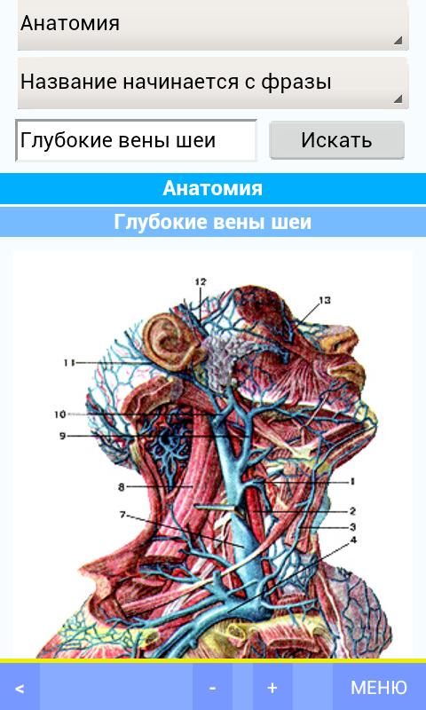 Электронные медицинские справочники