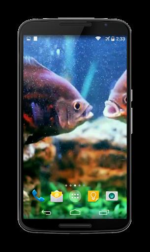 【免費個人化App】Aquarium Video Live Wallpaper-APP點子