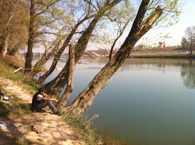 Vieux Rhône à Irigny en  aval réserve de Pierre-Bénite photo #970