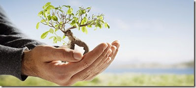 environmental consulting serbia