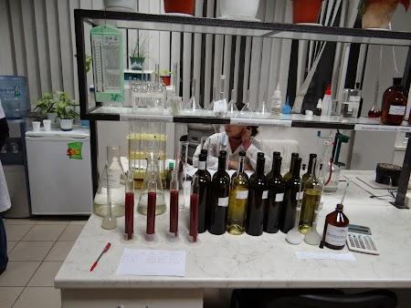 Basarabia - Drumul Vinului: Laborator analize vinuri