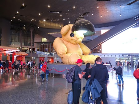 09. Doha airport bear.JPG