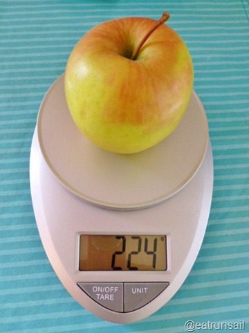 Jan 13 food scale 008