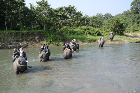 Imagini Nepal: safari pe elefanti in Chitwan National Park